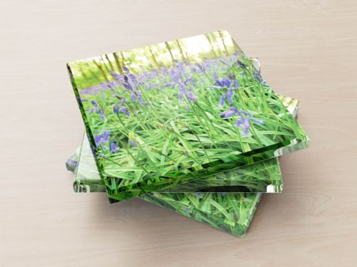 Bluebells - Glass Coasters